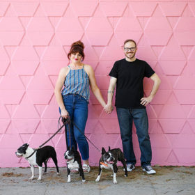 Couple holding hands while holding Boston Terriers in front of pink wall