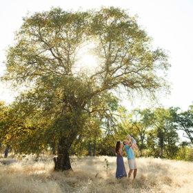 Large tree framing photo of mom, dad and baby boy as sunset peeks through dry grass Davis