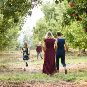 Family walking through orchards framed by apple trees in Apple Hill