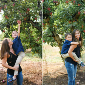 Mom lifting up son to pick apples on tree in Apple Hill